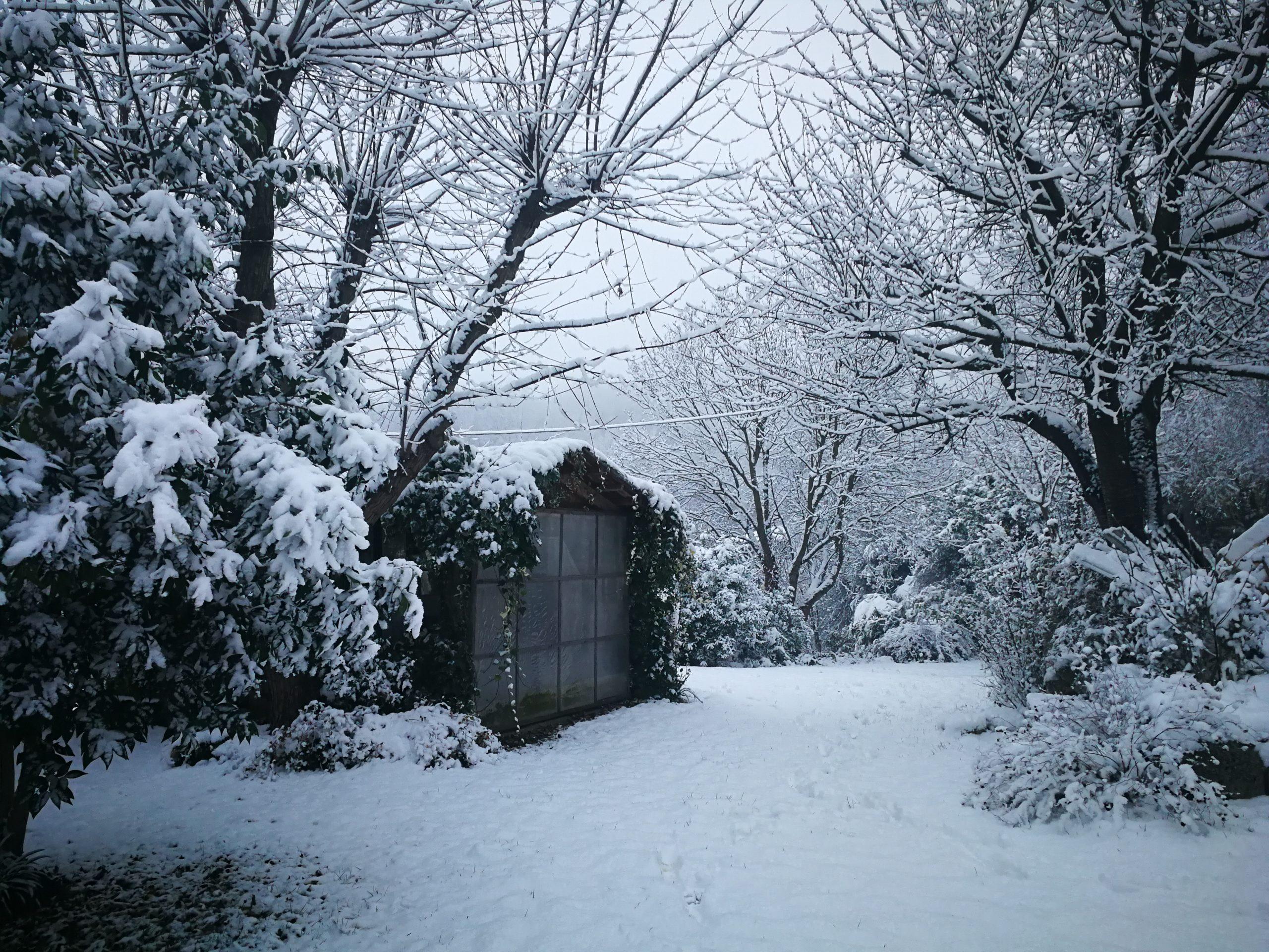 Evviva la neve! 9