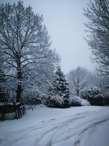 Evviva la neve! 3
