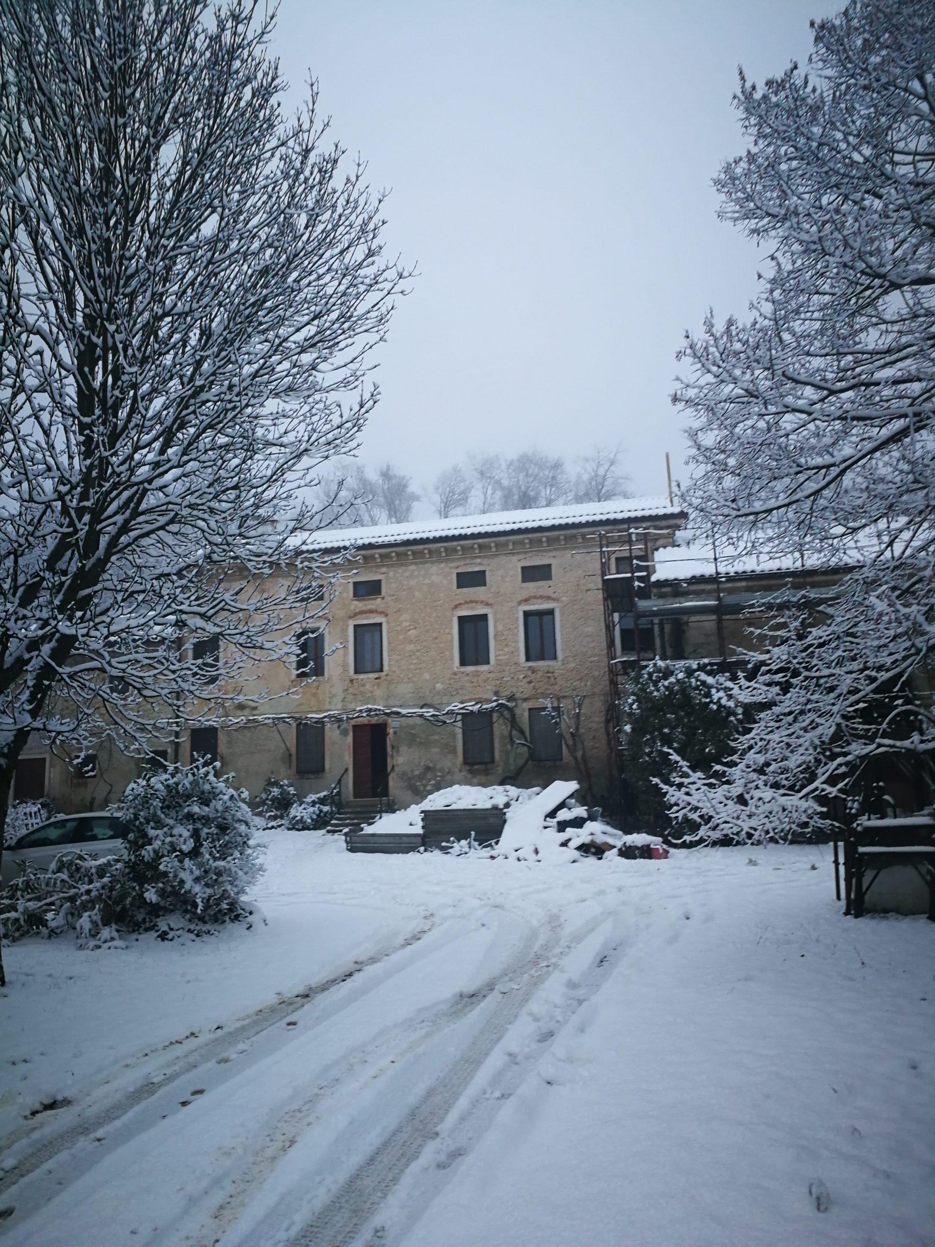 Evviva la neve! 7