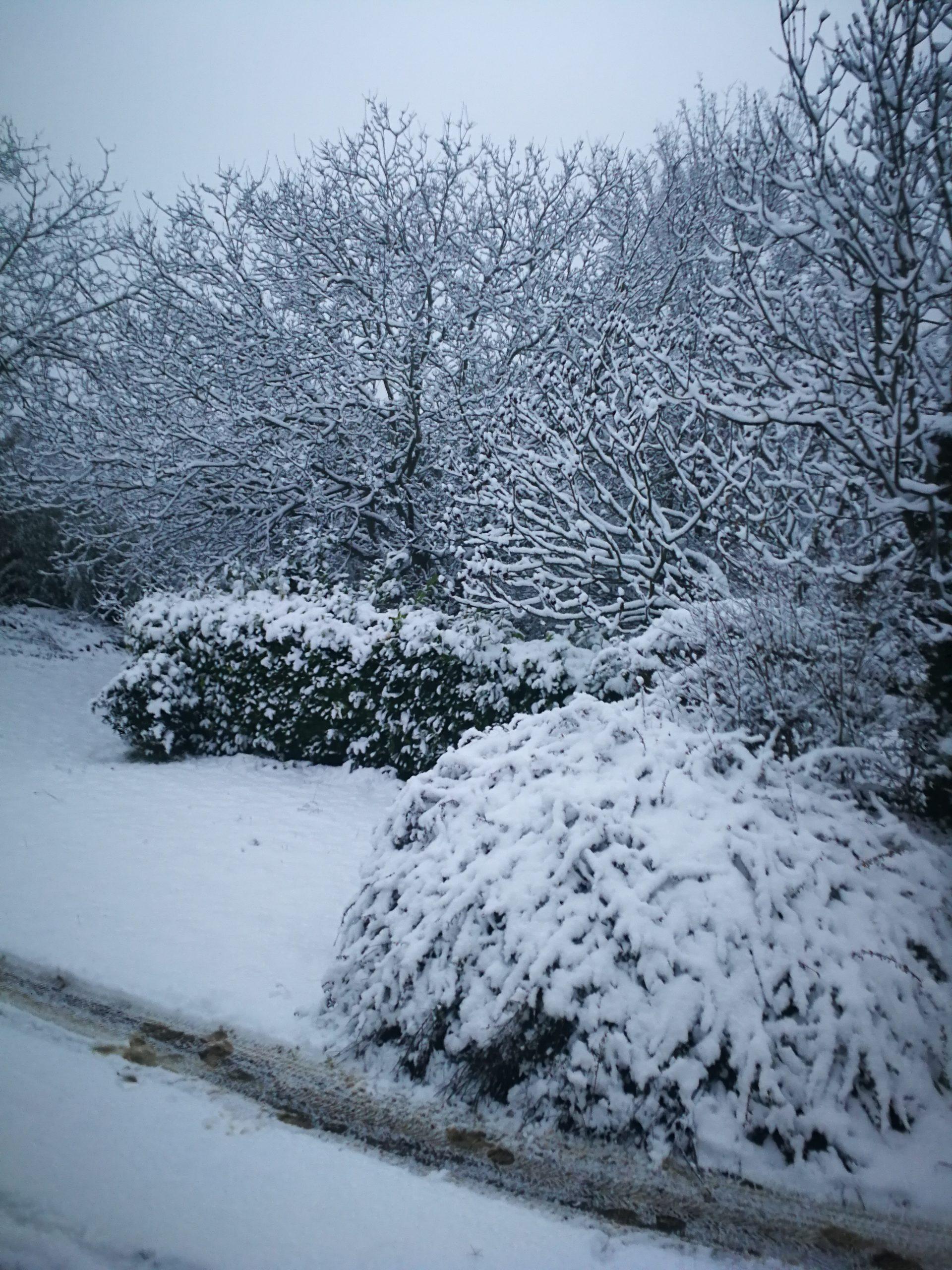Evviva la neve! 6